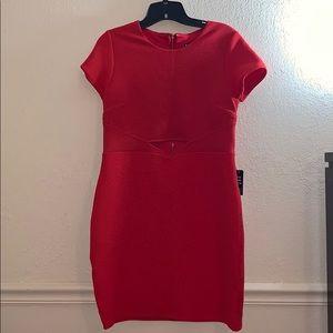 Express short red dress